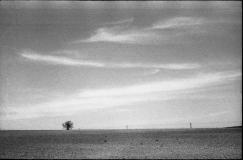 Landschaft10