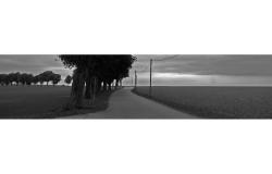 Landschaft11